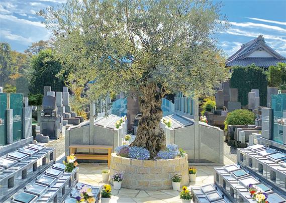 樹木葬-オリーブ光の庭園-top3
